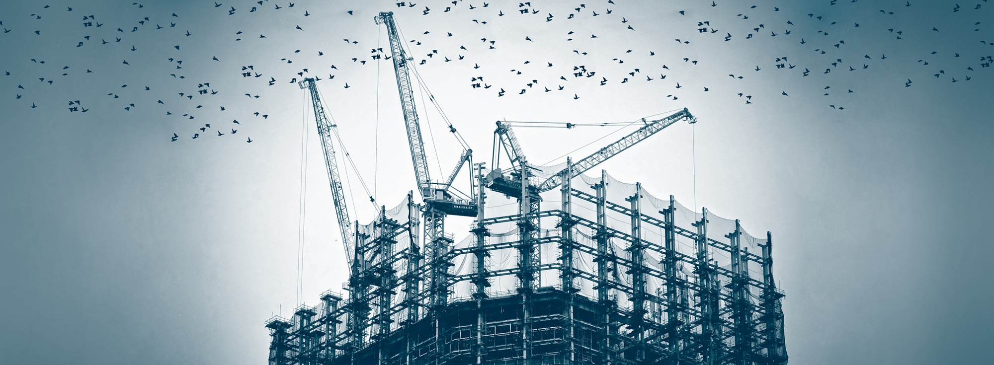 Carelli construction image with clear background